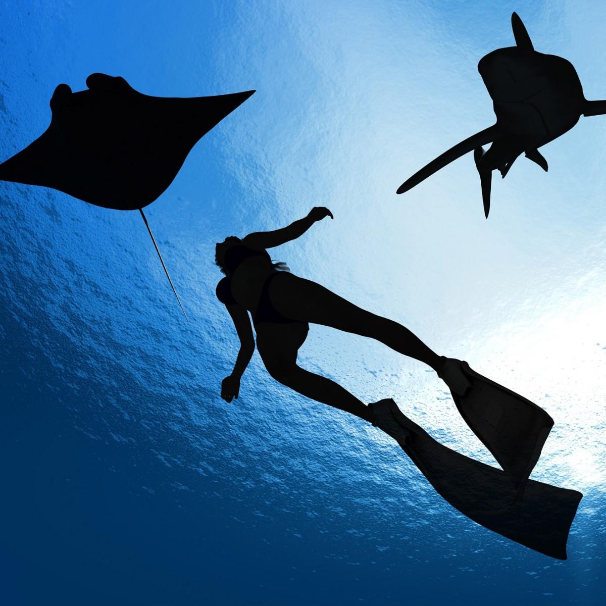 Aquatic 5